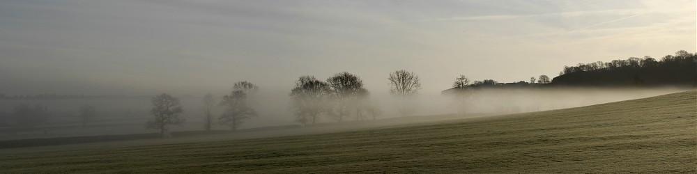 photoblog image early morning mist